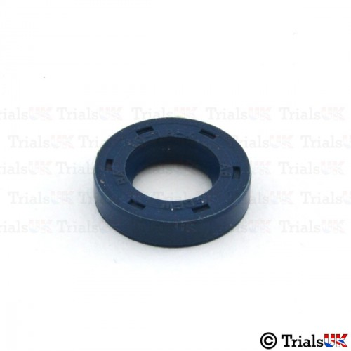 Beta Water Pump Seal - Evo/Rev3/Techno/TRS One/TRS RR/TRS Gold