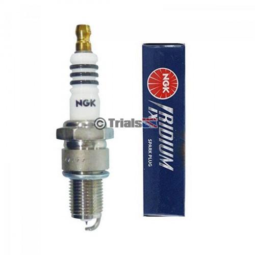 NGK Iridium Spark Plug - Beta/GasGas/Scorpa/Sherco